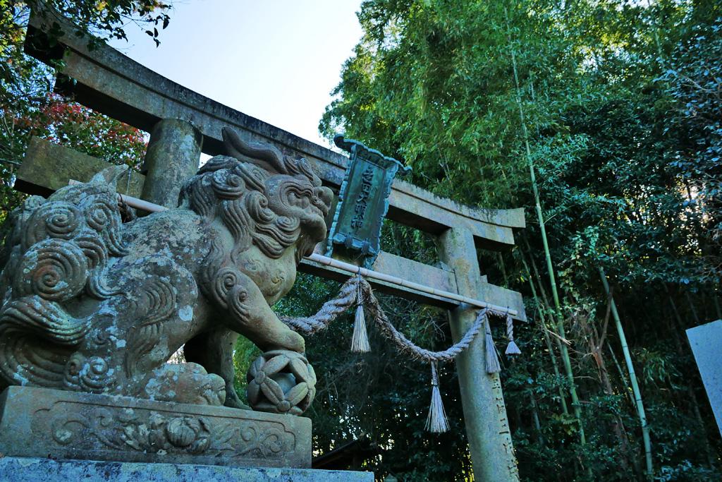 走田神社の写真素材