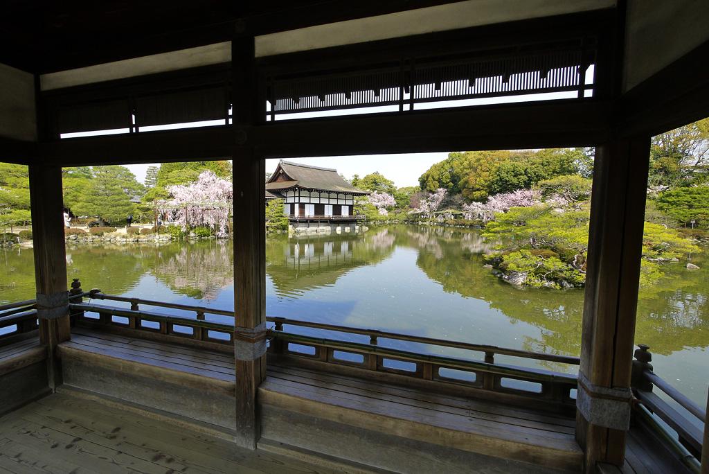平安神宮の桜の写真素材