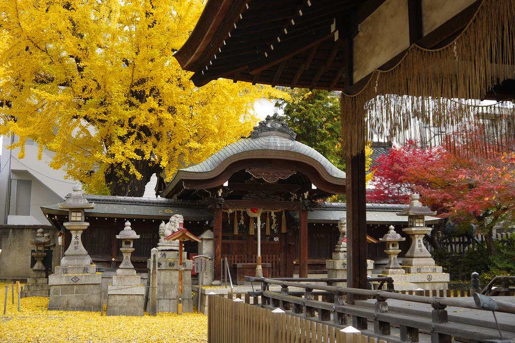 東三条大将軍神社の写真