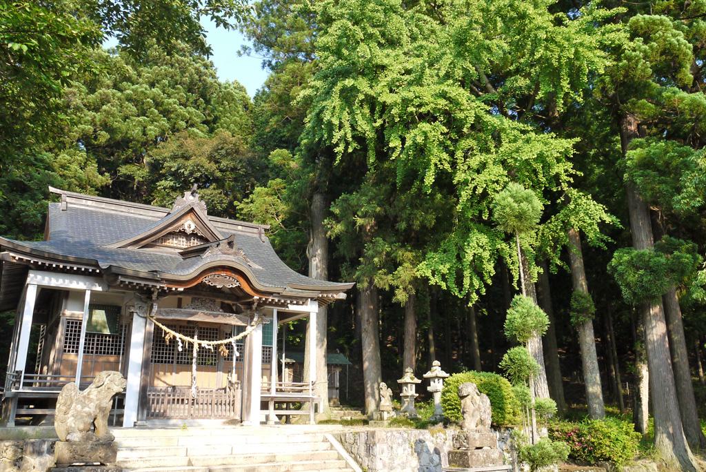 売布神社の写真素材