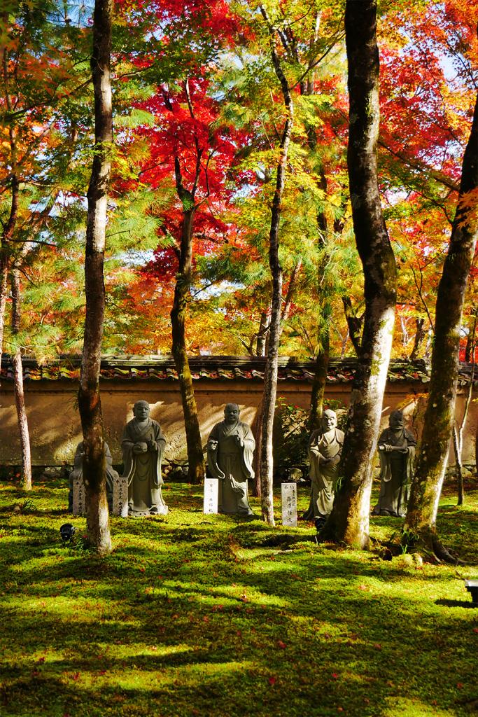 宝厳院の紅葉の写真素材