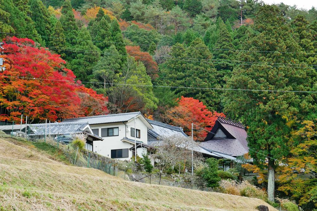 亀岡 法常寺の写真素材