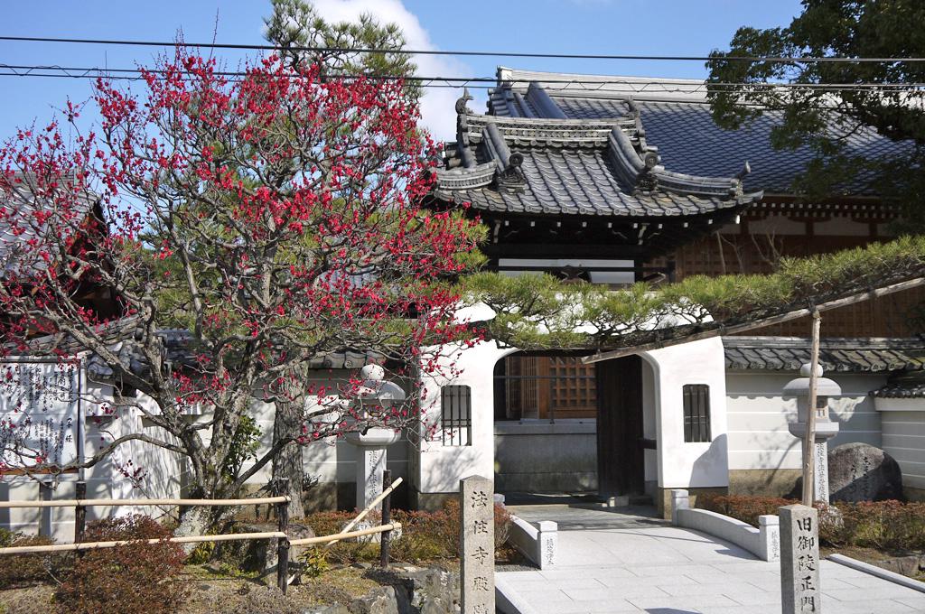 法住寺の写真素材