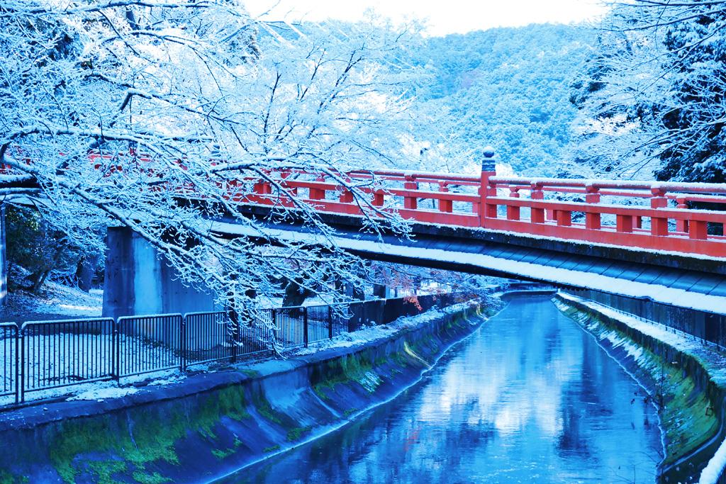 雪の本圀寺の写真素材と山科疏水