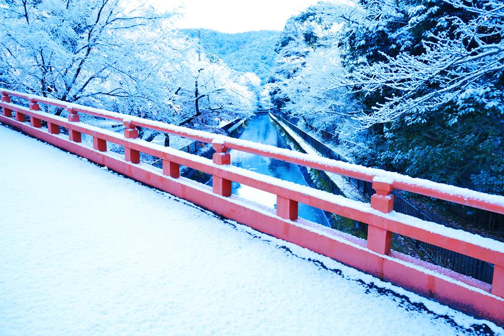 雪の本圀寺の写真素材