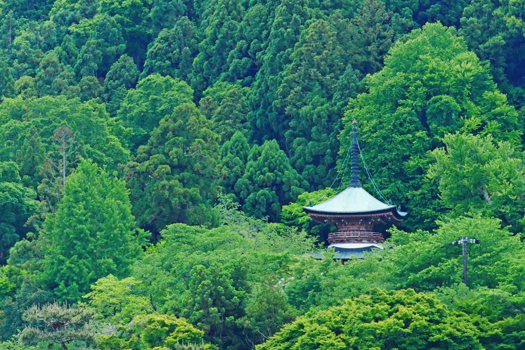 虚空蔵法輪寺の多宝塔の写真素材