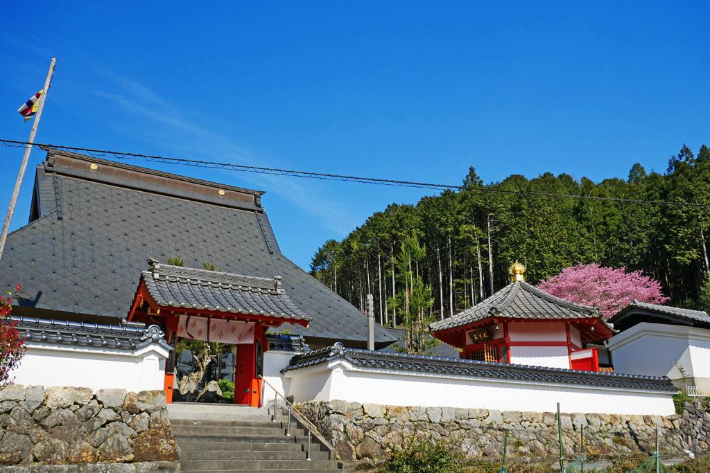 宝泉寺の写真素材