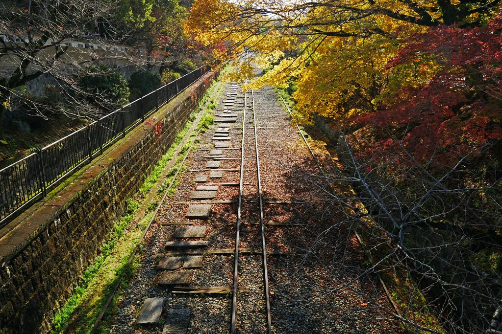 京都 蹴上のインクラインの秋