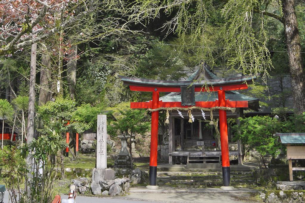 岩戸落葉神社の写真素材
