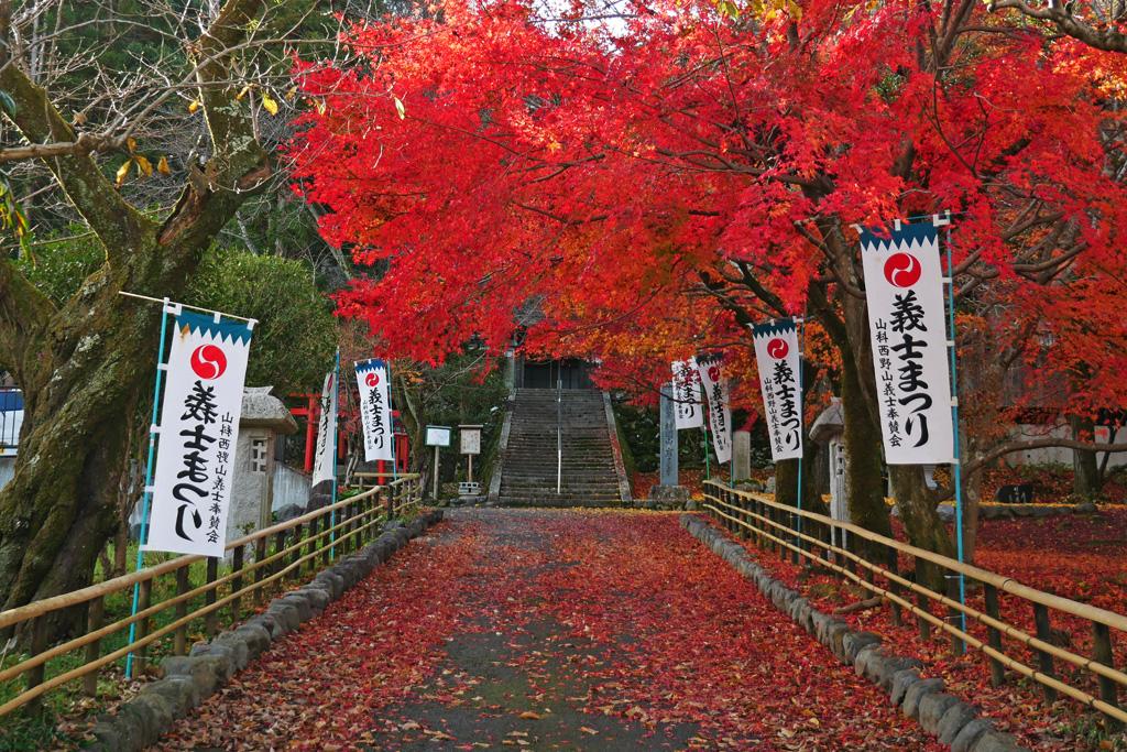 岩屋寺の紅葉の写真素材