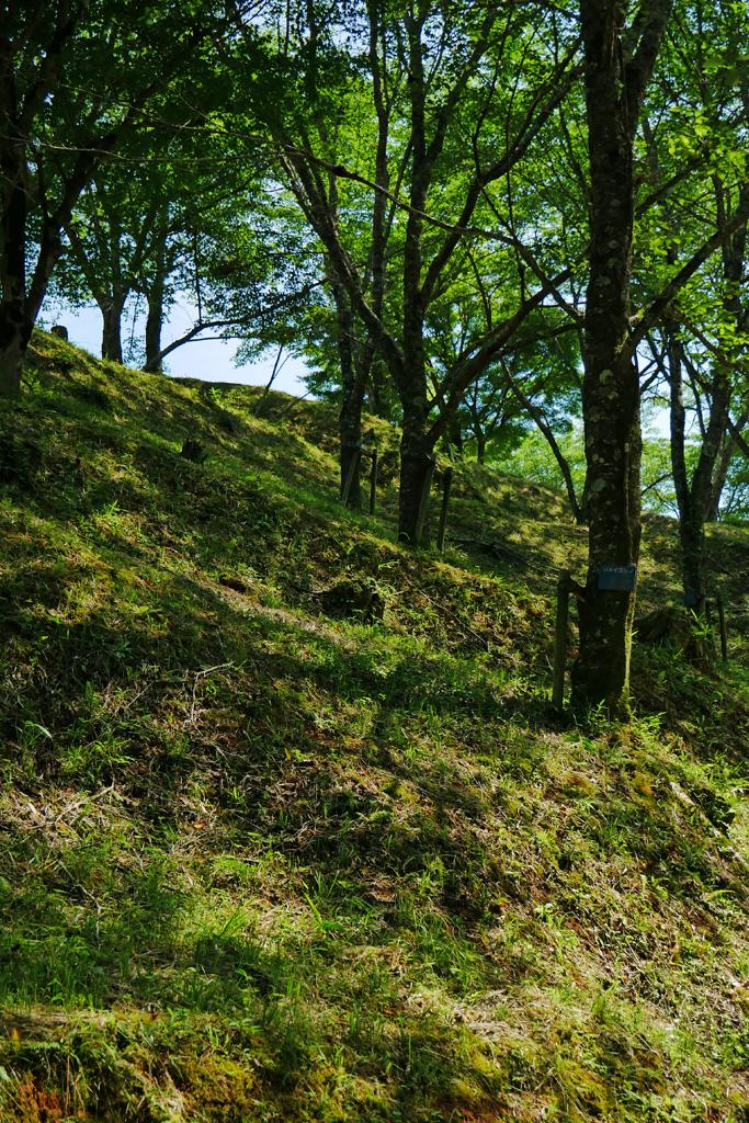 猪崎城跡の写真素材