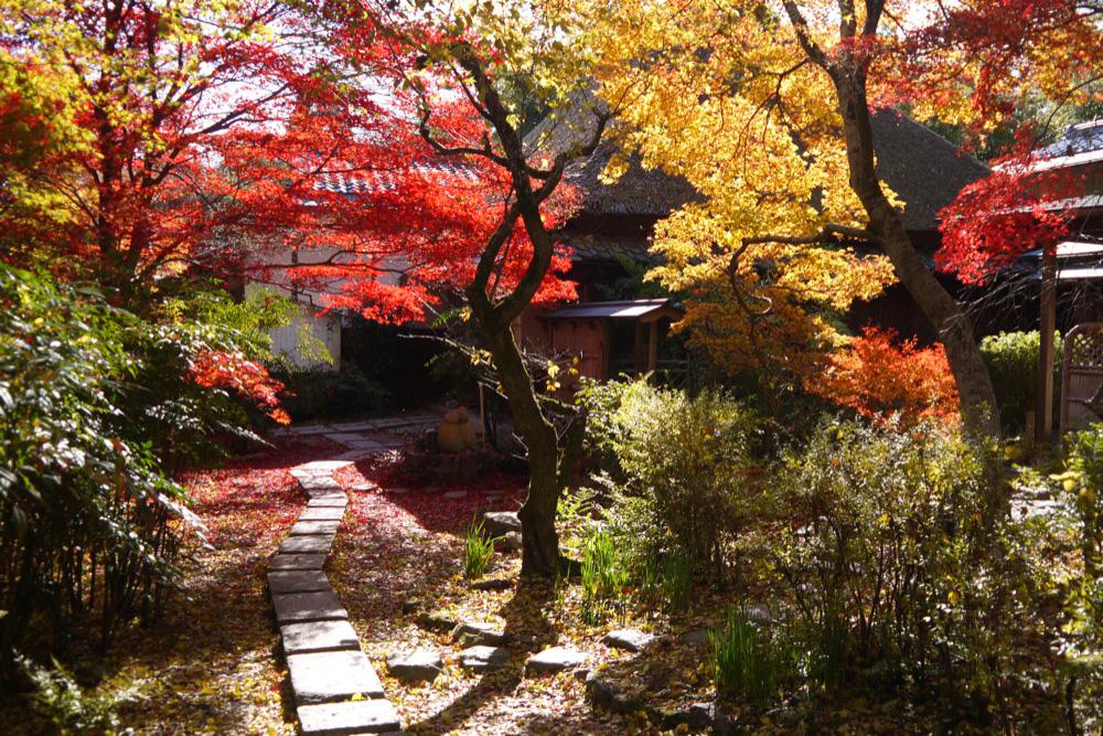 直指庵の紅葉の写真素材