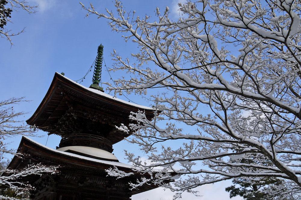 常寂光寺の雪の写真素材