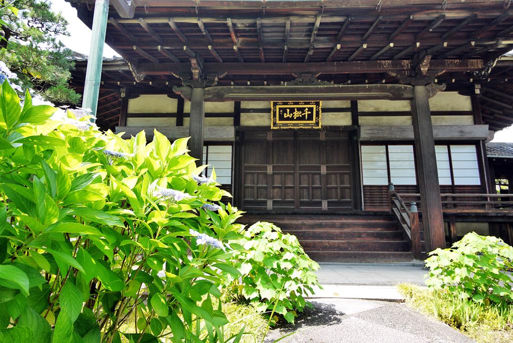 上善寺の写真素材