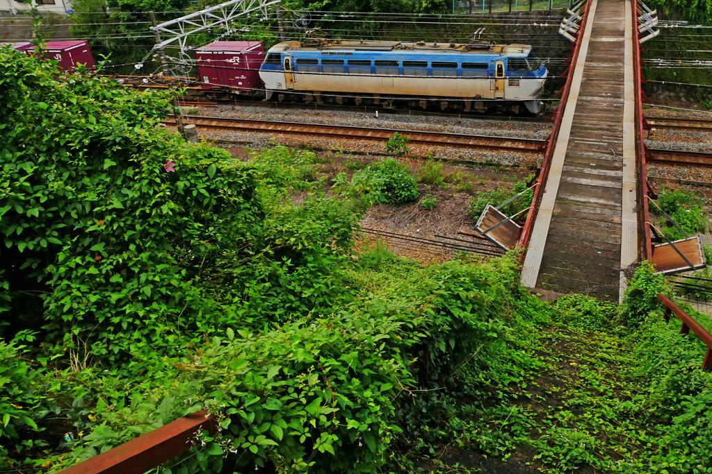 京都 JR貨物列車 EF66 サメ 東山トンネルの西の跨線橋の写真素材