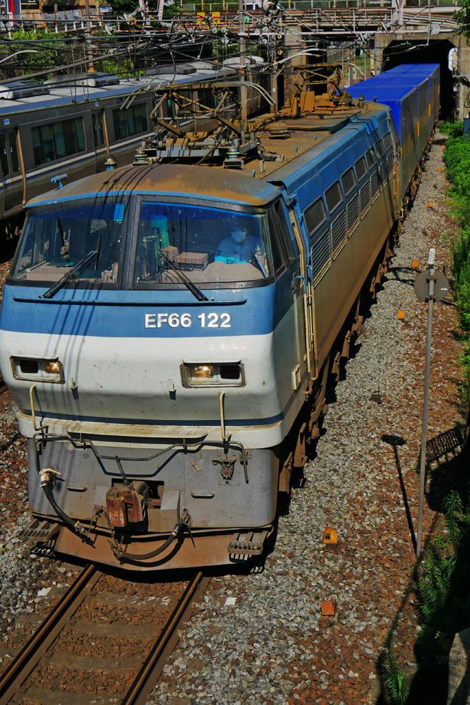 京都のJR貨物列車 EF66-122 サメの写真素材