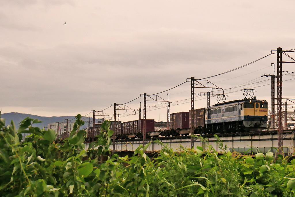 JR 電気機関車 EF65-2068の写真素材