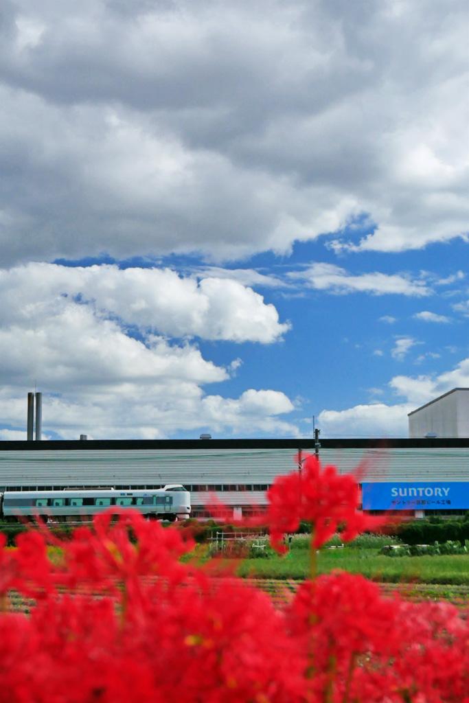 JR京都線 長岡京市のサントリーの工場の写真素材