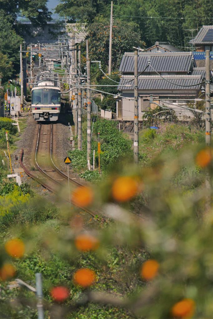 JR奈良線の写真素材