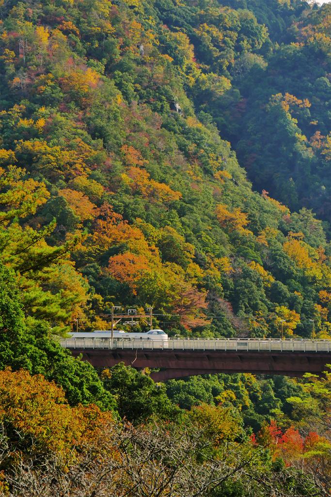 保津峡駅 JR山陰線の写真素材