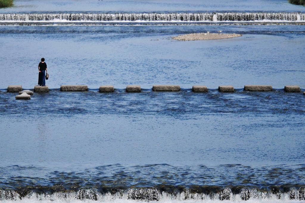 京都 鴨川 飛び石の写真素材