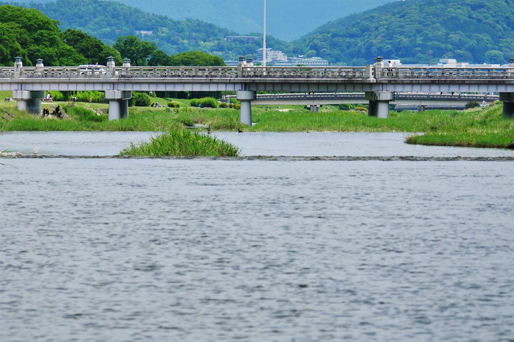 京都 賀茂川の北大路橋 飛び石の写真素材