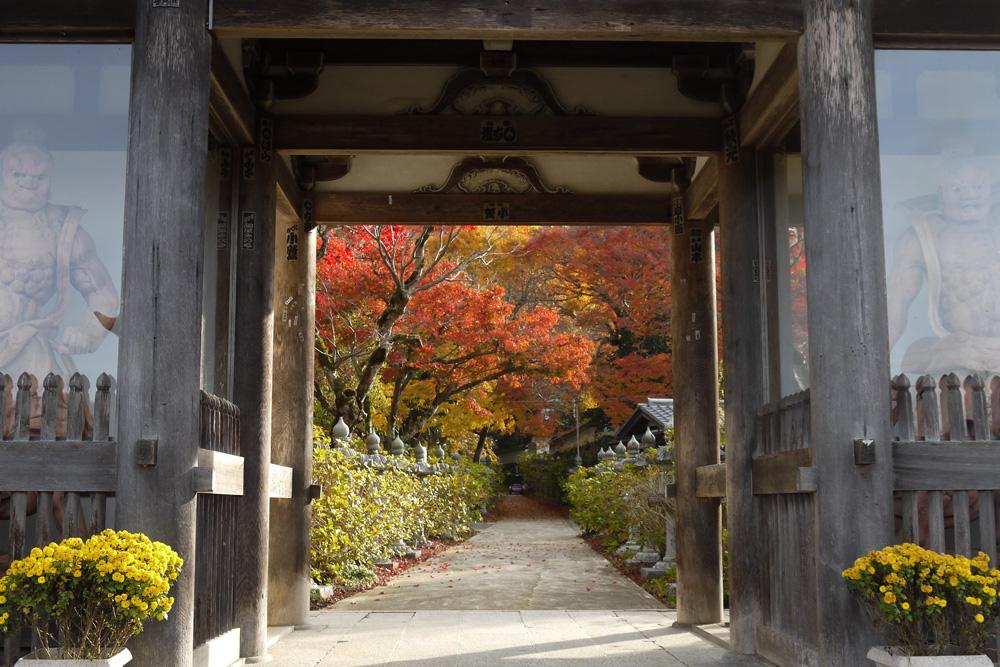 福知山 観音寺の紅葉