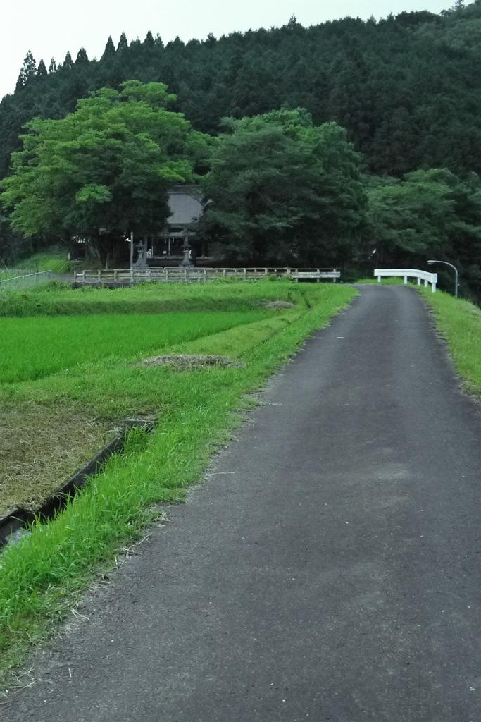 唐鞍神社の写真素材