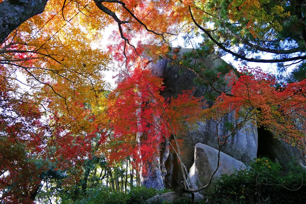 笠置寺の紅葉写真素材