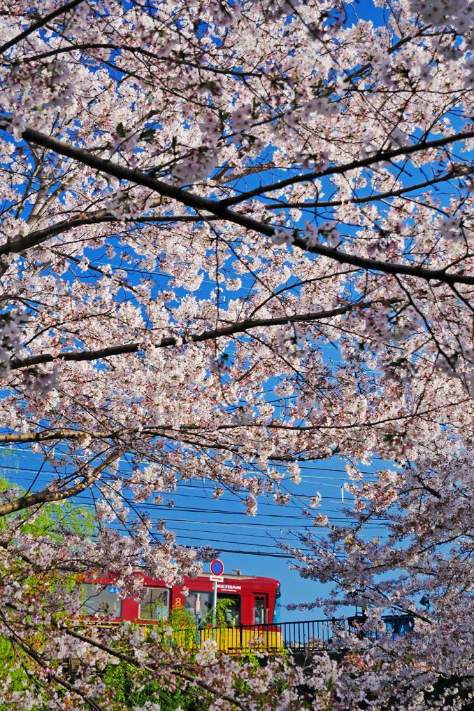 京阪電車と宇治川派流の写真素材