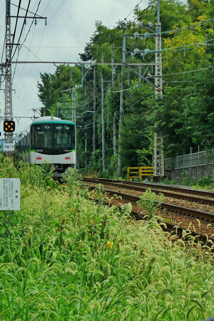 京阪電車と二子塚古墳の写真素材