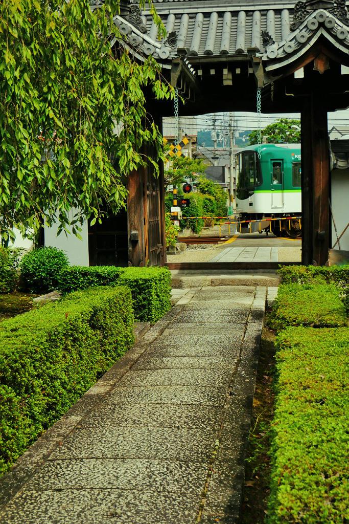 京阪電車と西方寺の写真素材