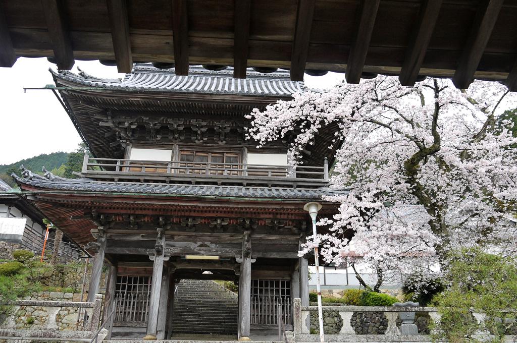 桂林寺の写真素材