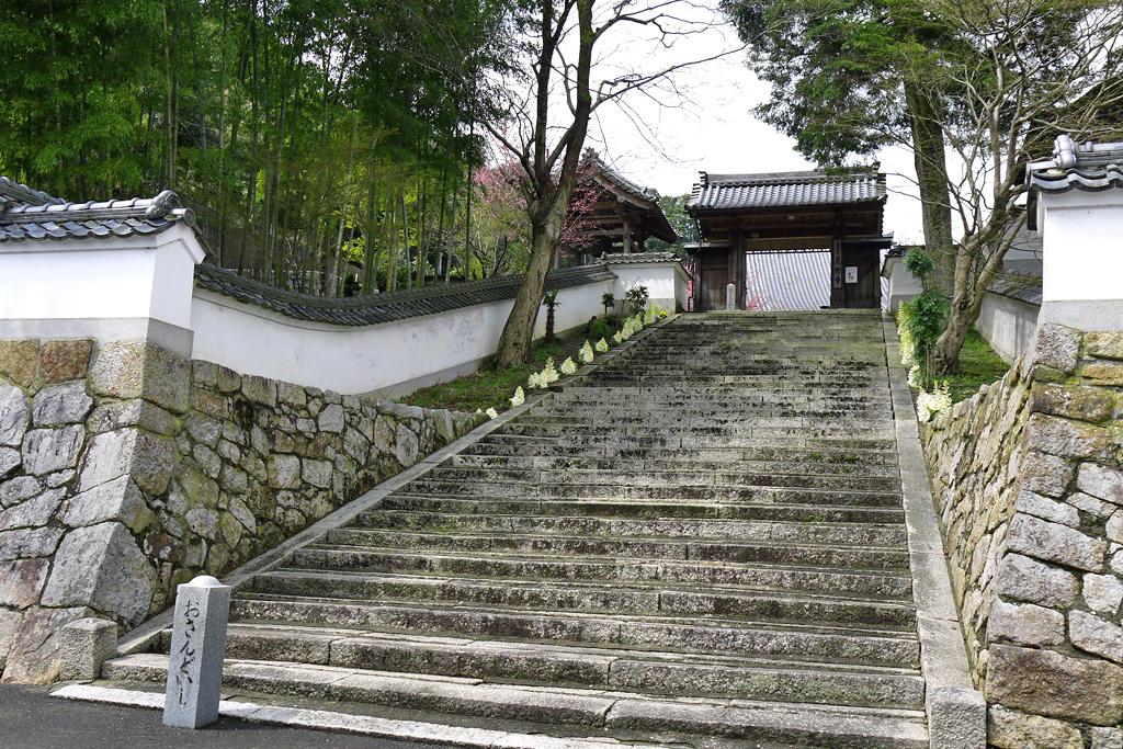 見樹寺の写真素材