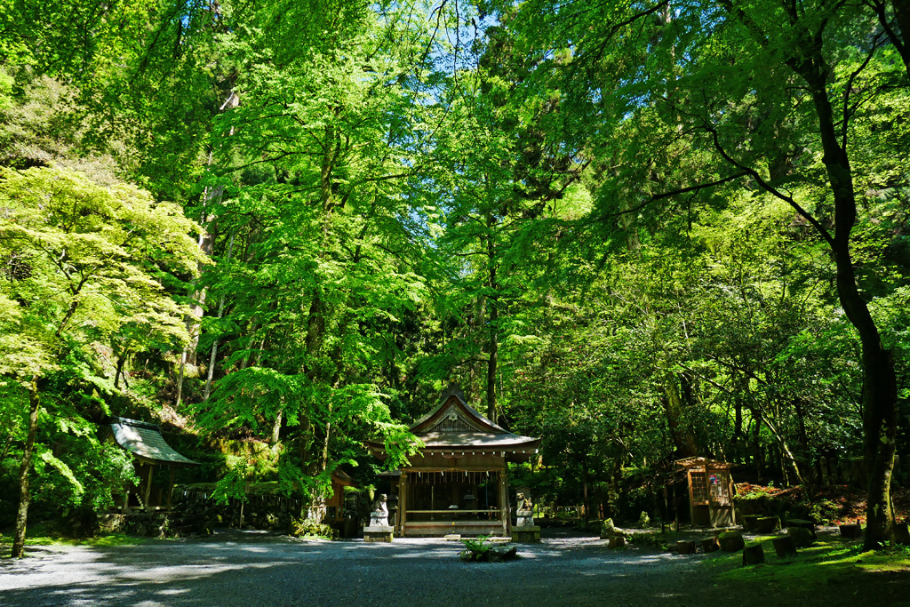 貴船神社の奥宮の写真素材