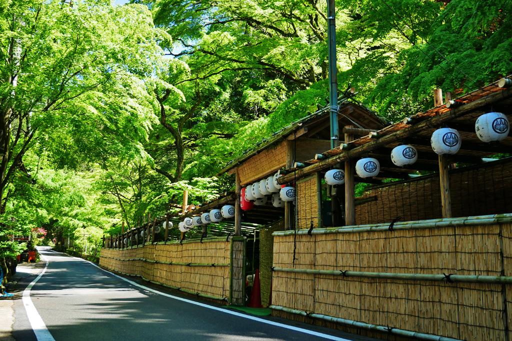 貴船神社の初夏の写真素材