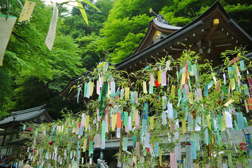 貴船神社の初夏