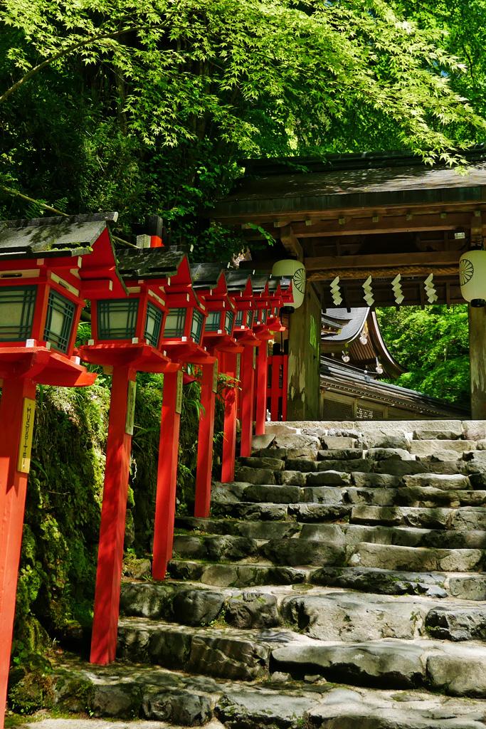 貴船神社の初夏の石段 写真素材
