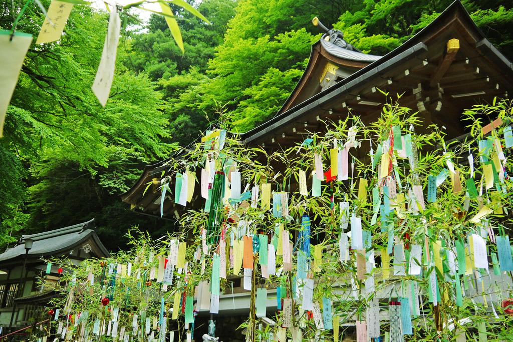貴船神社の七夕の写真素材