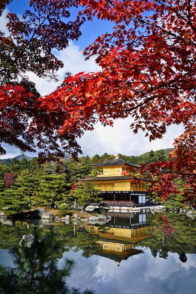 金閣寺の紅葉