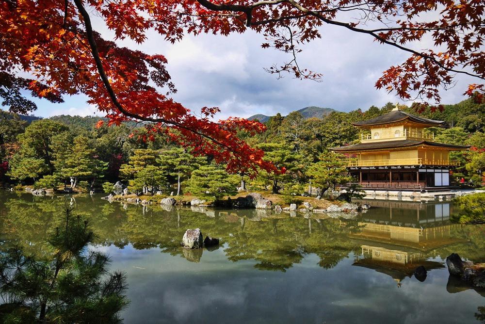 金閣寺の紅葉の写真素材