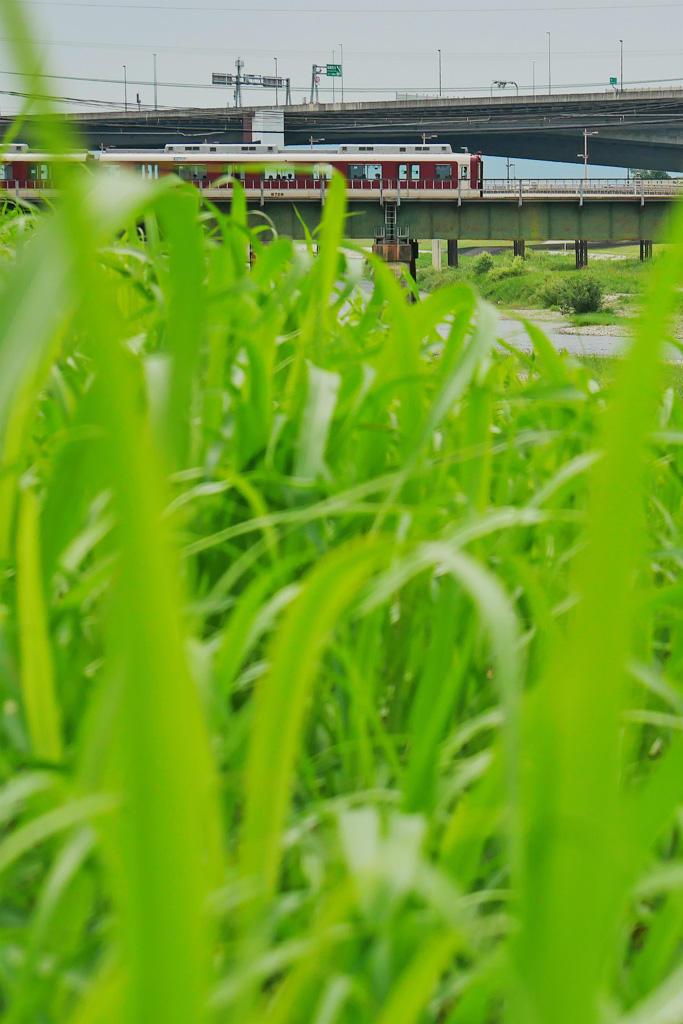 近鉄電車とくいな橋の写真素材