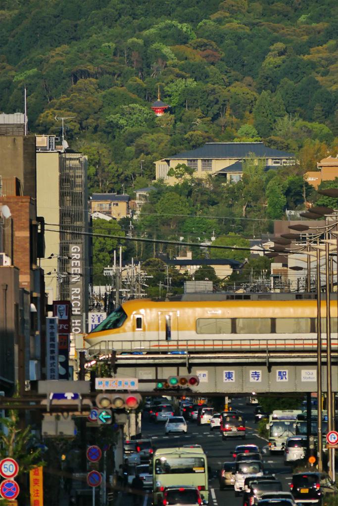 今熊野観音寺の多宝塔(医聖堂)の写真素材