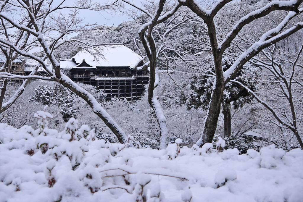 清水寺の雪