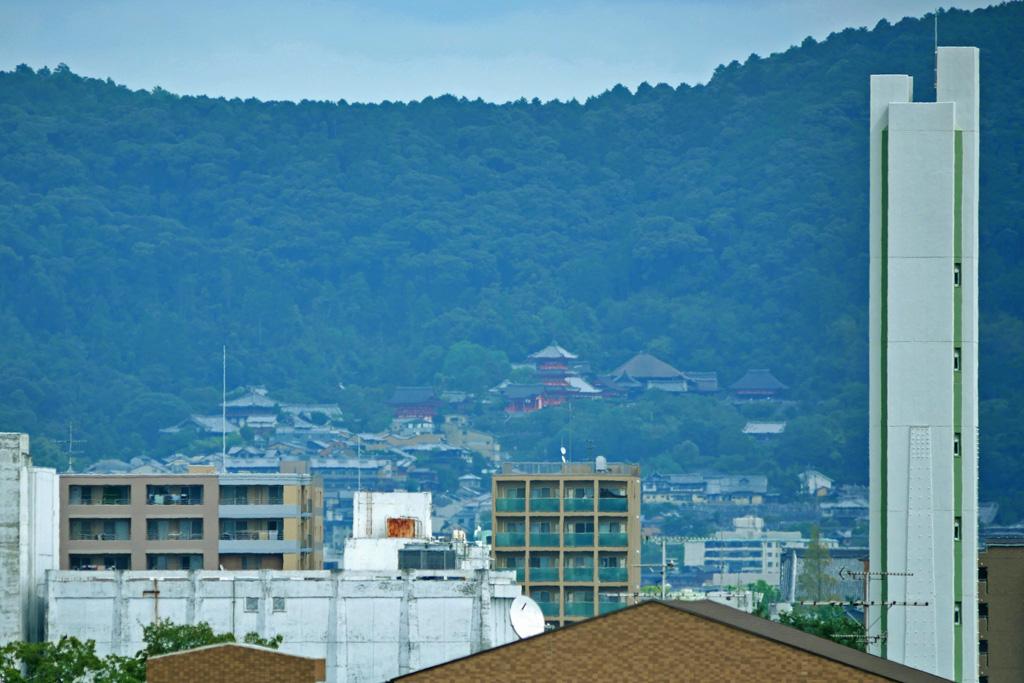 清水寺の遠景の写真素材