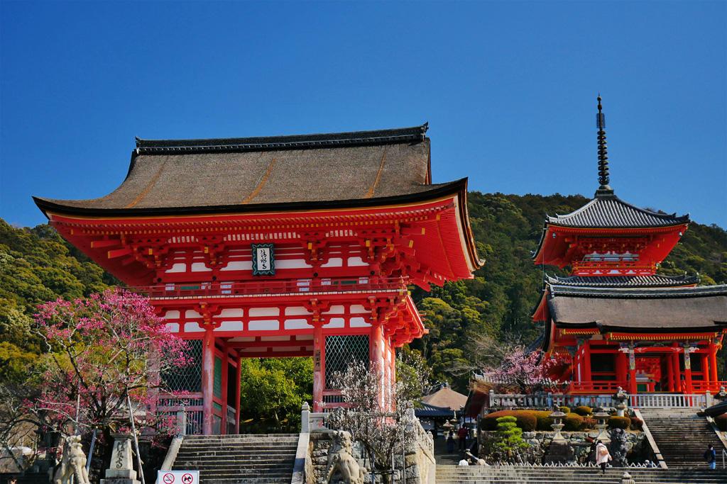 清水寺の梅の写真素材