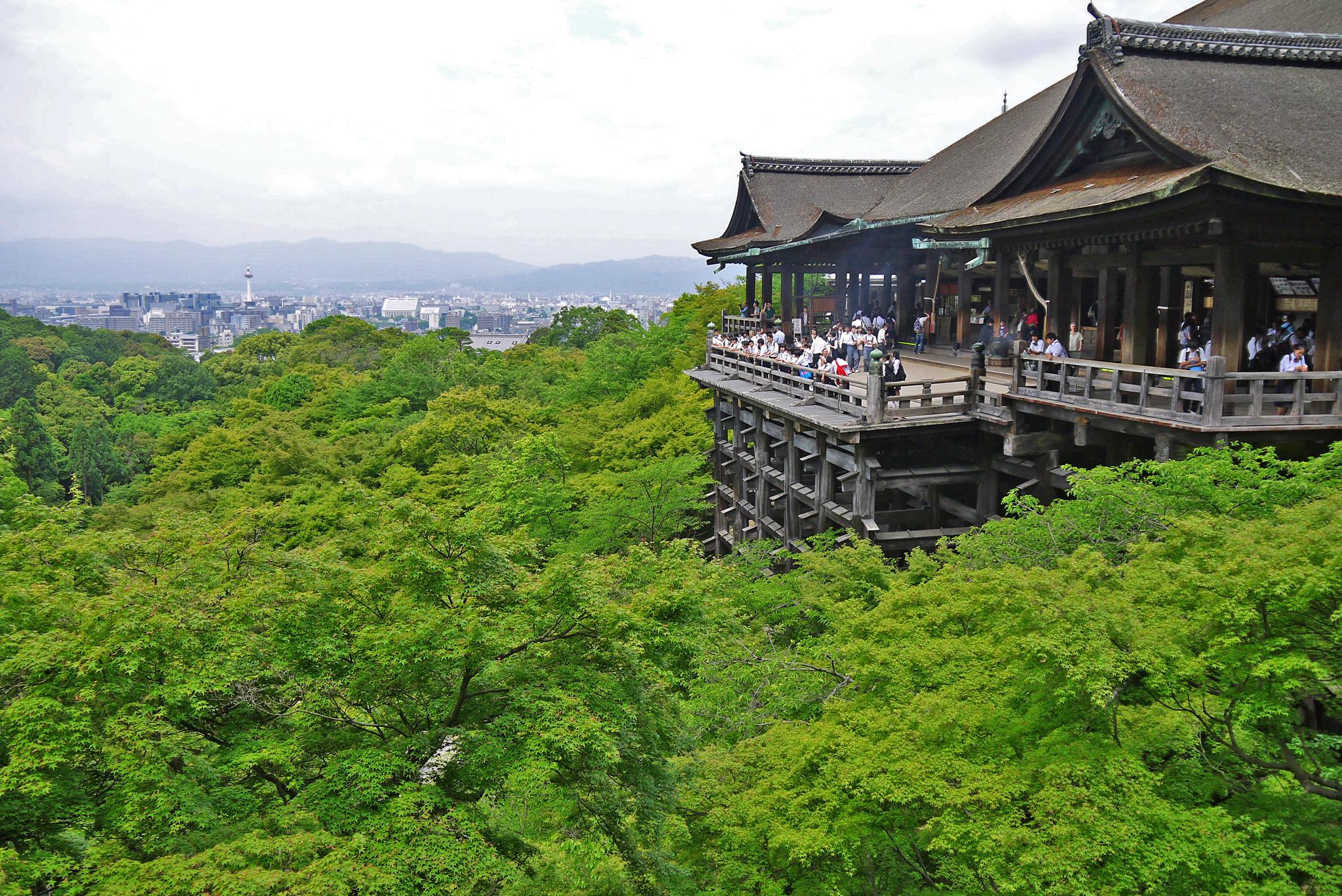 清水寺の青もみじの写真素材