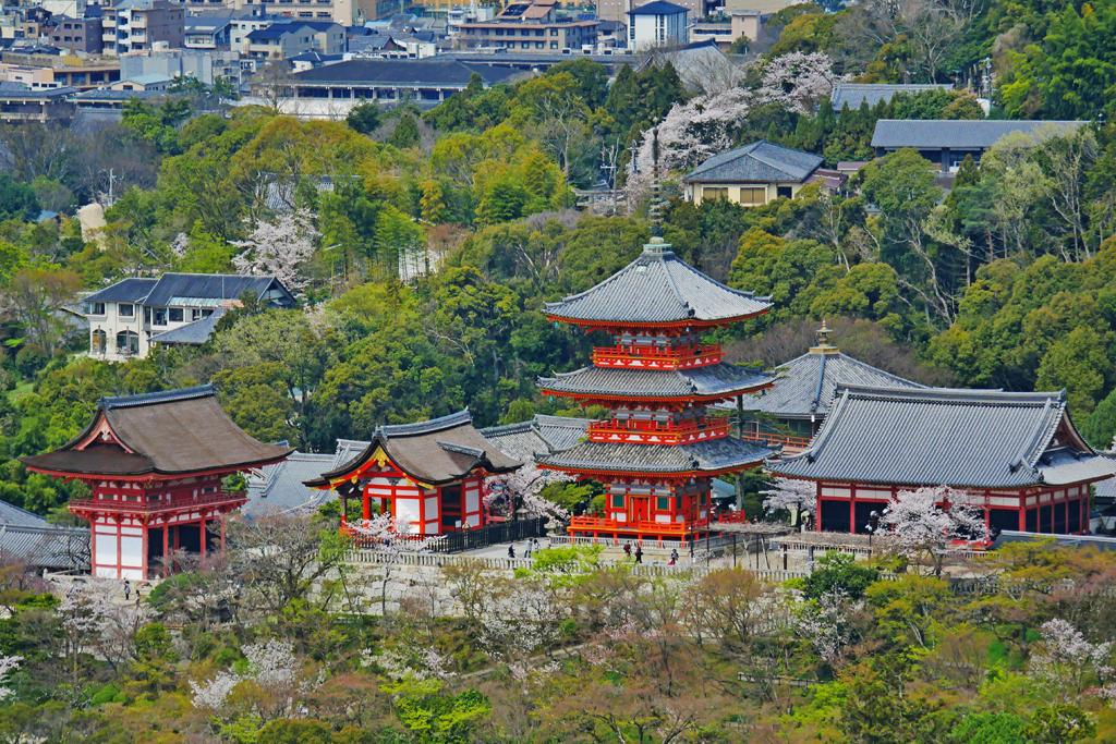 清水寺の本堂の写真素材