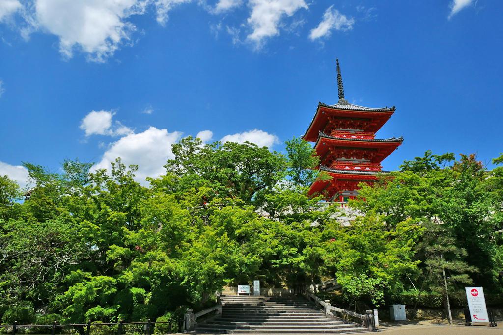 清水寺三重塔の青もみじの写真素材