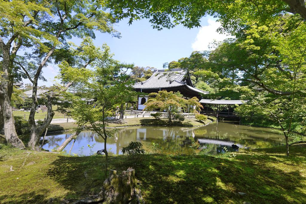 高台寺 - 京都フリー写真素材集:京都の神社・寺院・観光地・世界遺産写真が無料!